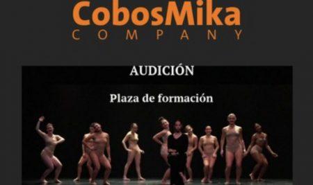 AUDICIÓN PARA PLAZA DE FORMACIÓN EN COBOSMIKA COMPANY