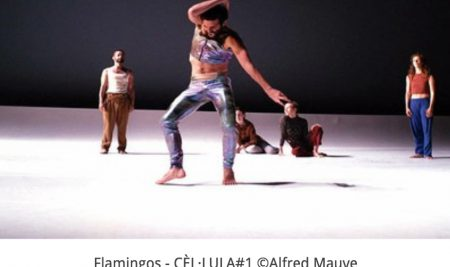 Audición para bailarines profesionales-Cèl·lula #3